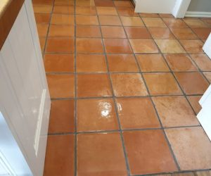 Terracotta Cleaning Melbourne